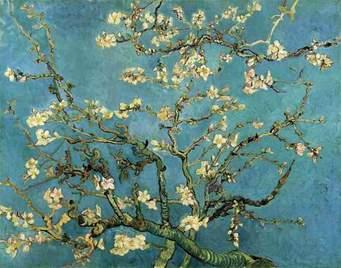 Les amandiers Van Gogh