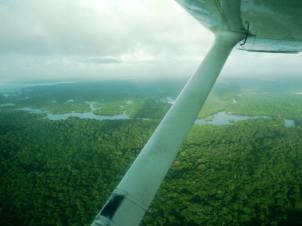 An aerial view of the Guyanese rain forest