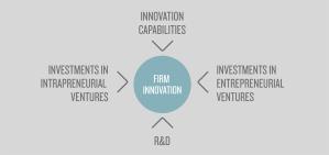 Startup-Driven-Innovation