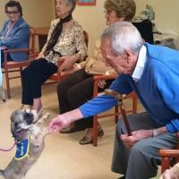 Aumentan los centros asistenciales que se suman a las terapias asistidas con perros en la atención a las personas mayores