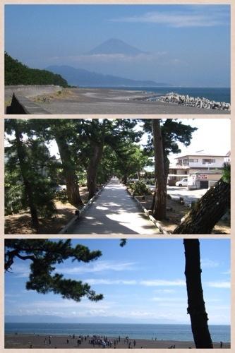 静岡旅行コラージュフォト。