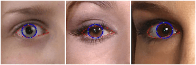 EyeAnnotation.png