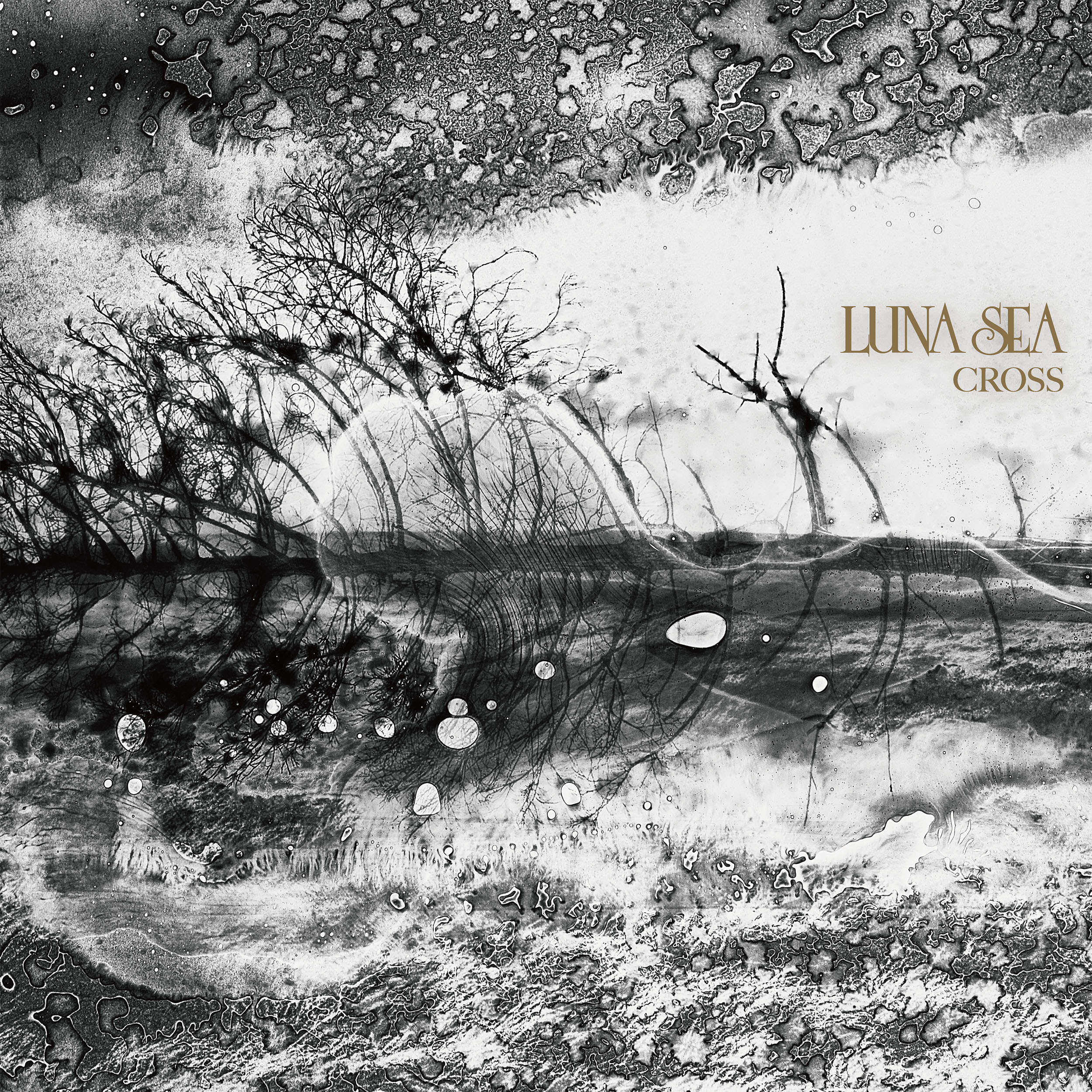 LUNA SEA's 30th Anniversary! Release of 10th Studio Album, CROSS, Jacket Covers! Simultaneous Release of latest Profile Pictures, Album Track List, Bonus CD & Video Information!