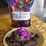 Raw Chocolate Mila Brownies