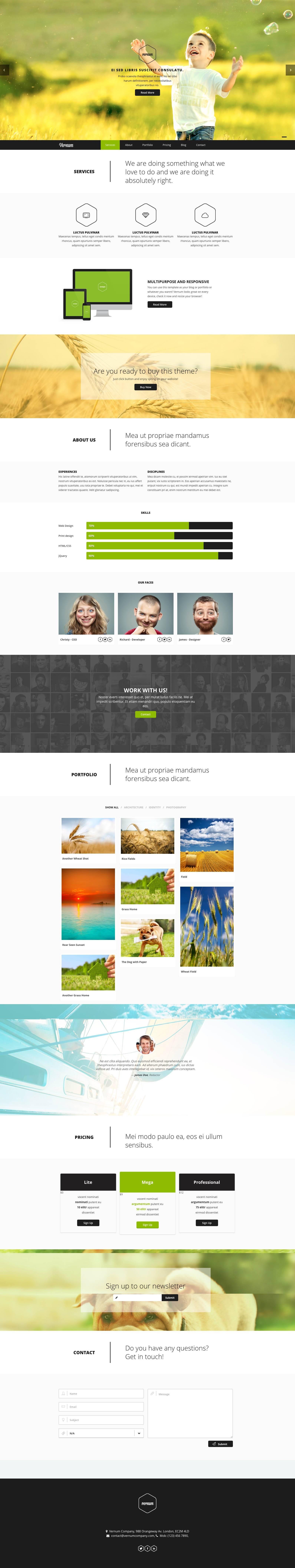 Parallax Wordpress Theme Nulled