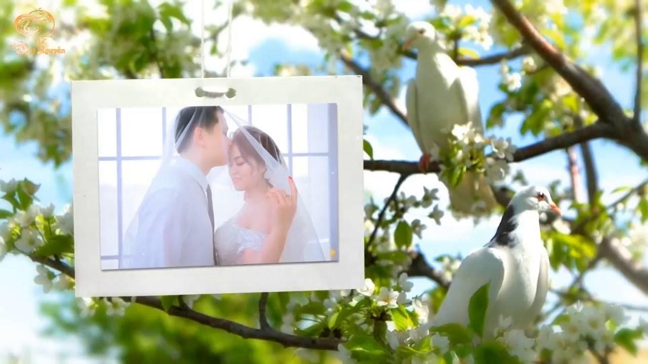 Wedding Slideshow Templates Free Download