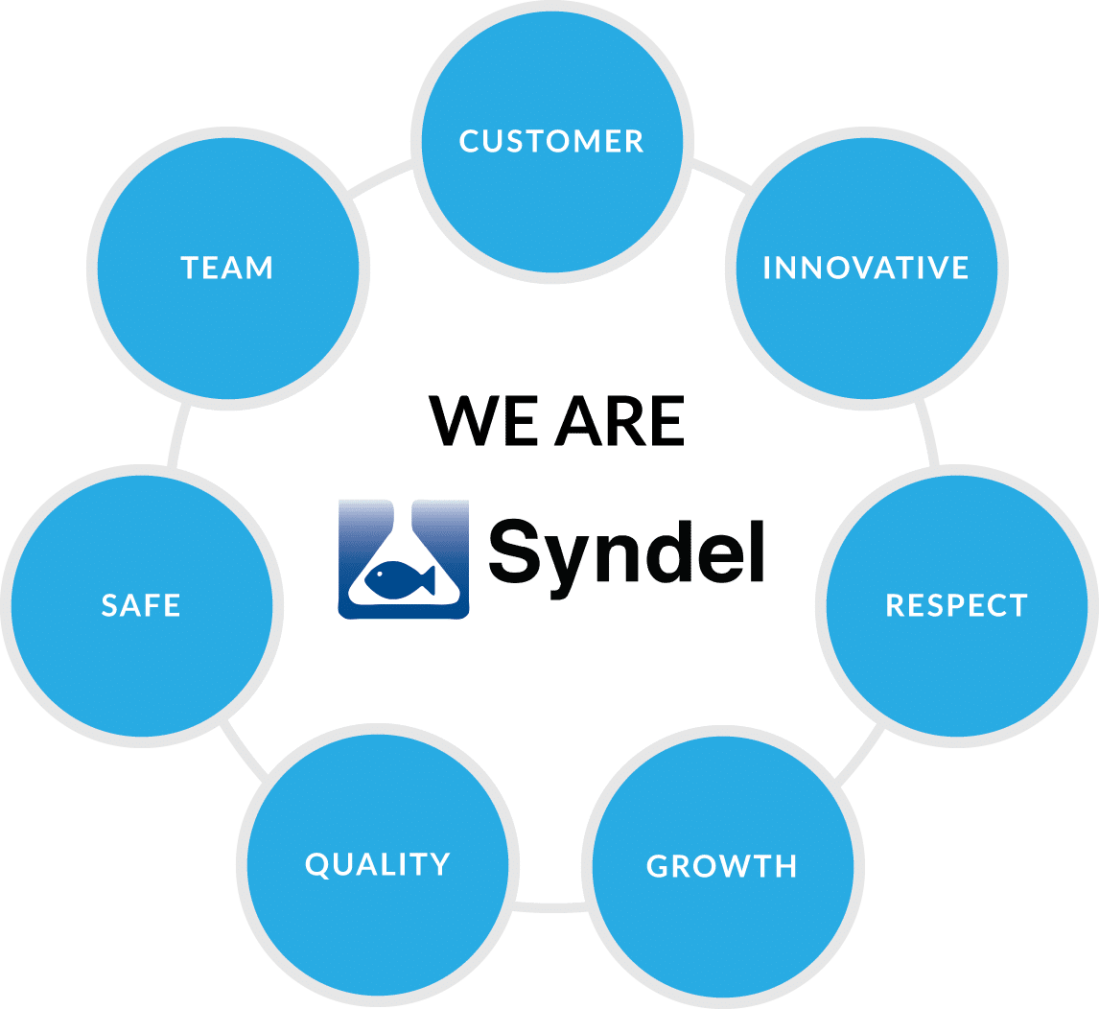 Syndel Values
