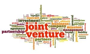 What We Do Joint Venture Syndication Attorneys Coeur d'Alene, DI St. Agusutine. FL