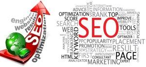 Organic SEO ( Search Engine Optimization )