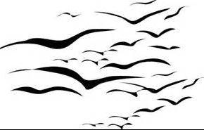 Migratory_birds