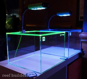 Nanobox Reef Custom Nano Tanks