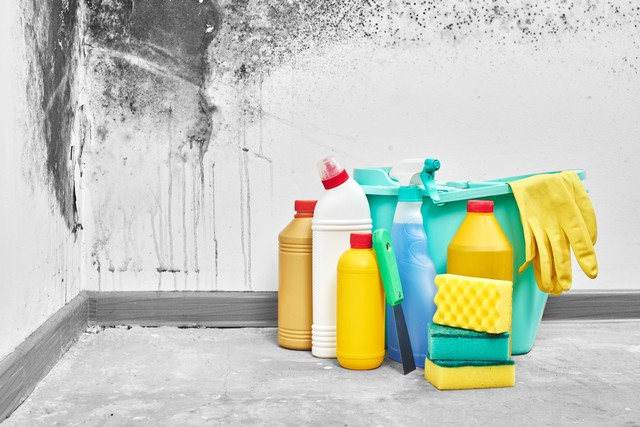 Does Bleach Really Kill Mold?: The idea that bleach can kill mold is a myth! Bleach will kill mold growing on non-porous surfaces like glass, tiles, bathtubs and counter tops. However bleach cannot completely kill mold growing in non-porous materials like drywall and wood. Do not use bleach to kill mold on non-porous materials!