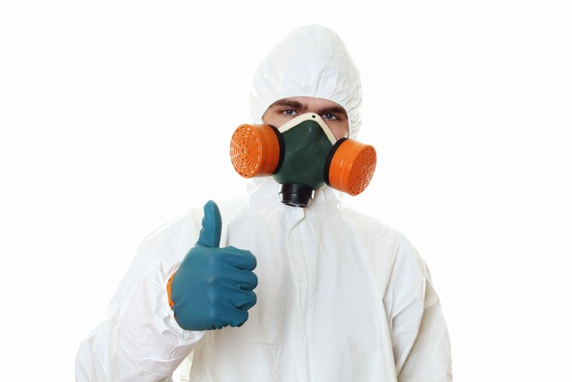 Mold Remediation Steps!