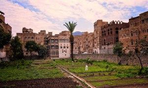 Community Garden, Sana'a