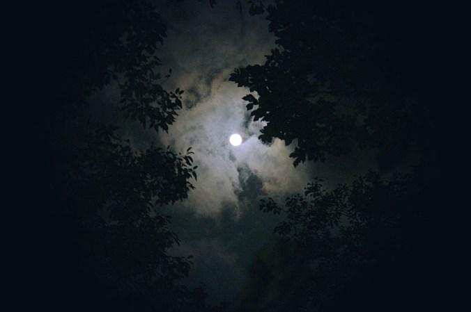 Sky-Moon-Night-View-In-The-Evening-Night-Cloud-1180345.jpg
