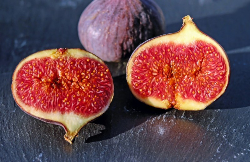 figs_red_coward_fruit_fruits_sweet_fig_fruit-535825