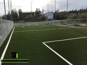 Sports Field Artificial Grass Application
