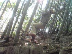 竹やぶの中で2