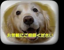 s_DSC00008-005 (1)