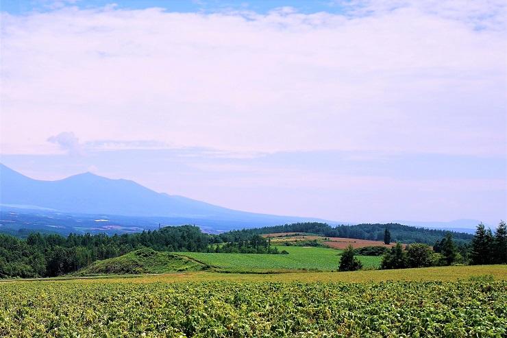 北海道ならではの風景