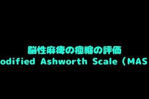Modified Ashworth Scale(MAS)