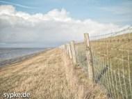 Am Strand / Deich von Tossens