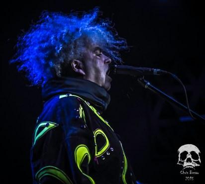 Melvins 12