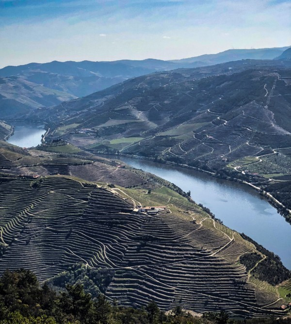 Douro Valley - Most Beautiful Wine Region In The World