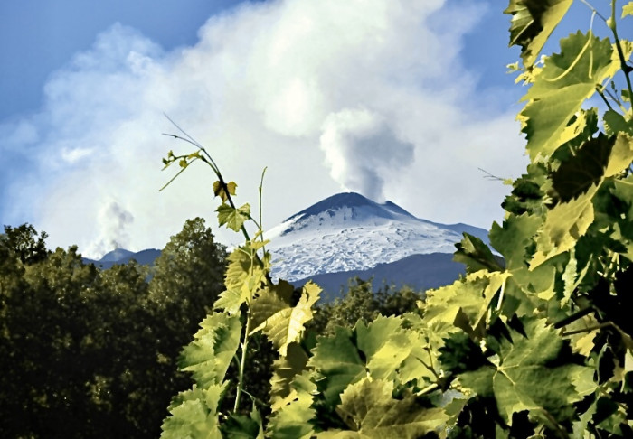 Firriato - Mount Etna Wine