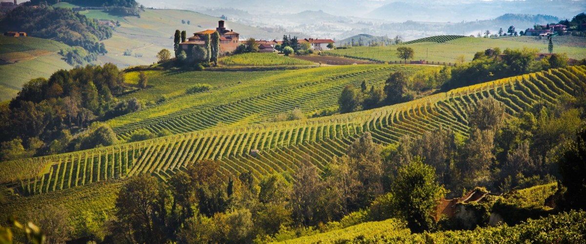 Moscato d'Asti – Exploring The Pure Expression Of Moscato d'Asti With Five Iconic Producers