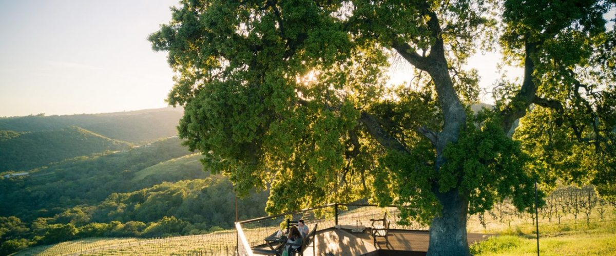 Alta Colina – Rhône Style Wines From Paso Robles