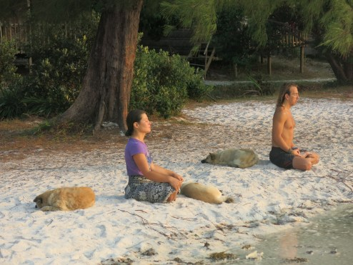 They were doing yoga peacefully at the beach in the early morning. Quite interesting!