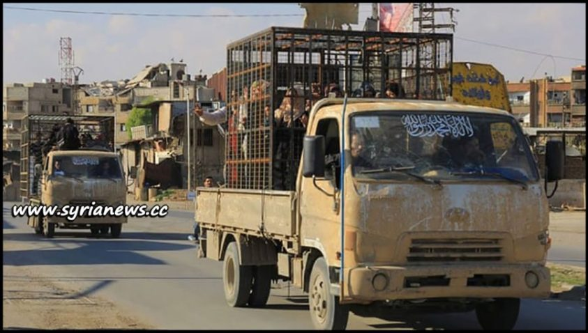 image-Women and children held in cages by Nusra Front driven around Douma - Eastern Ghouta