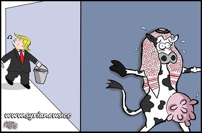 Trump Milking MBS Saudi Arabia