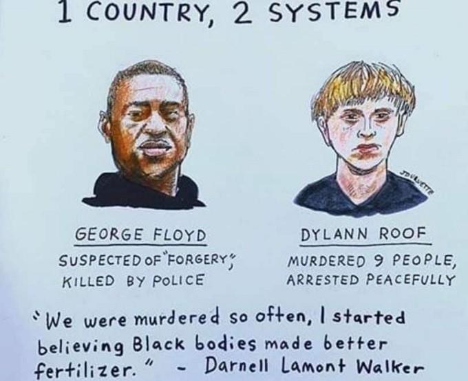 Black George Floyd vs white Dylann Roof