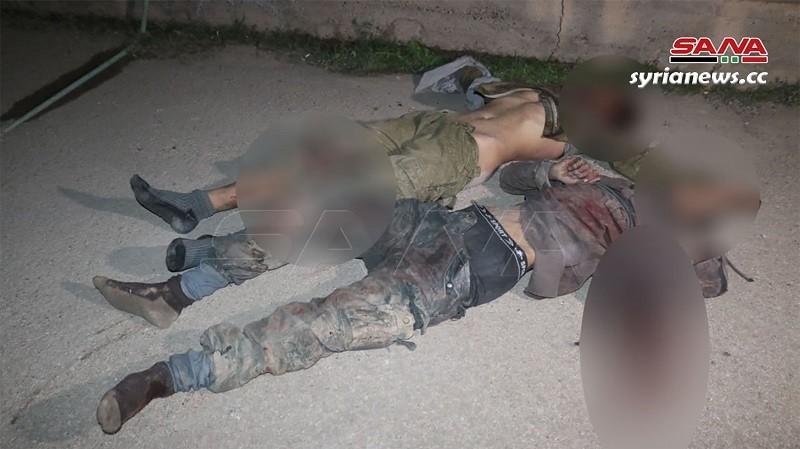 SAA eliminates terrorist group south of Deir Ezzor