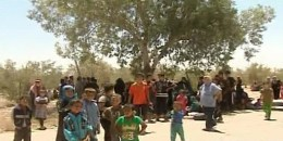 families-people-return-al-Batma-Triangle-Homs-fleeing-ISIS-2