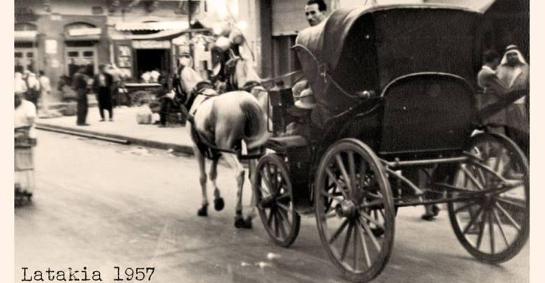 عربات الخيل التي كانت تجوب اللاذقية في خمسينيات القرن الماضي