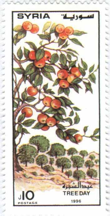 طوابع سورية 1997 – عيد الشجرة