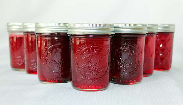 Muscadine Jelly . A home canned jelly made from Muscadine grapes. #southern #grapes #muscadine #jelly
