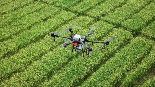 Agrotecnología: cultivos en la era digital