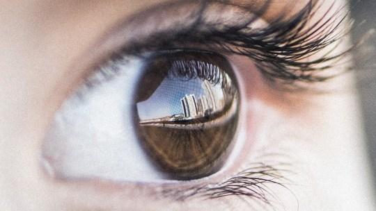 Investigadores españoles crean ECaBox para revivir ojos