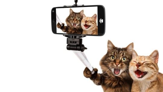 Las mejores aplicaciones para tomar la selfie perfecta desde un iPhone