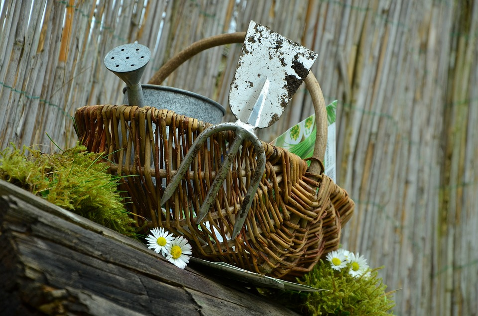 How to take care of your garden. Essential garden tools