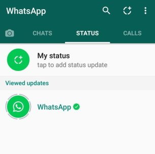 Can I view WhatsApp status update of someone without saving their number?