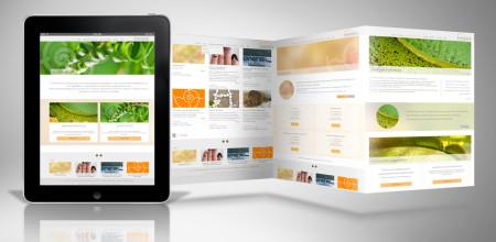 Webdesign für Betr.oec. Christa Sprenger
