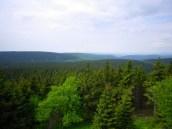 Blick vom Finsterberg