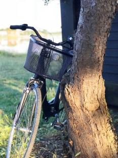 Sommertid er sykkeltid - jeg er så glad for å ha fått en sykkel med kurv