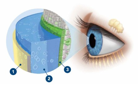 Understand dry eye - What are tears? | systane.com