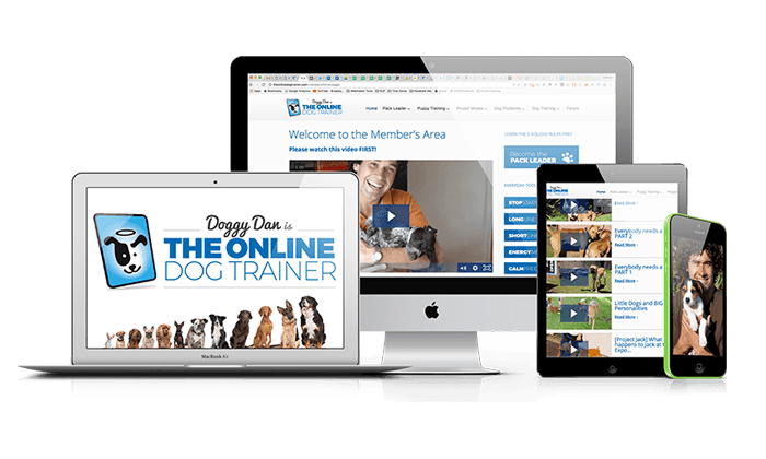 doggy dan the online dog trainer review